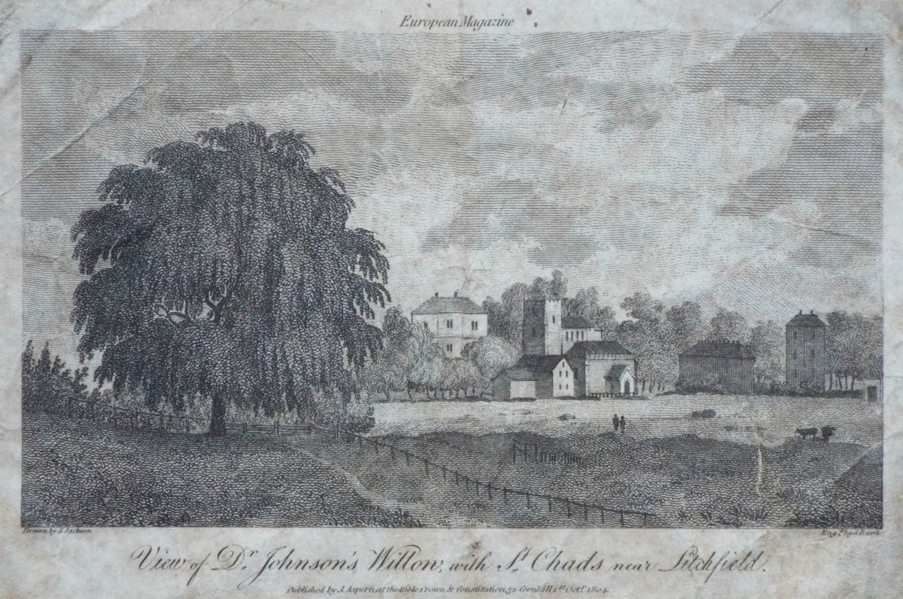 Print - View of Dr. Johnson's Willow, with St. Chads near Litchfield. - Rawle