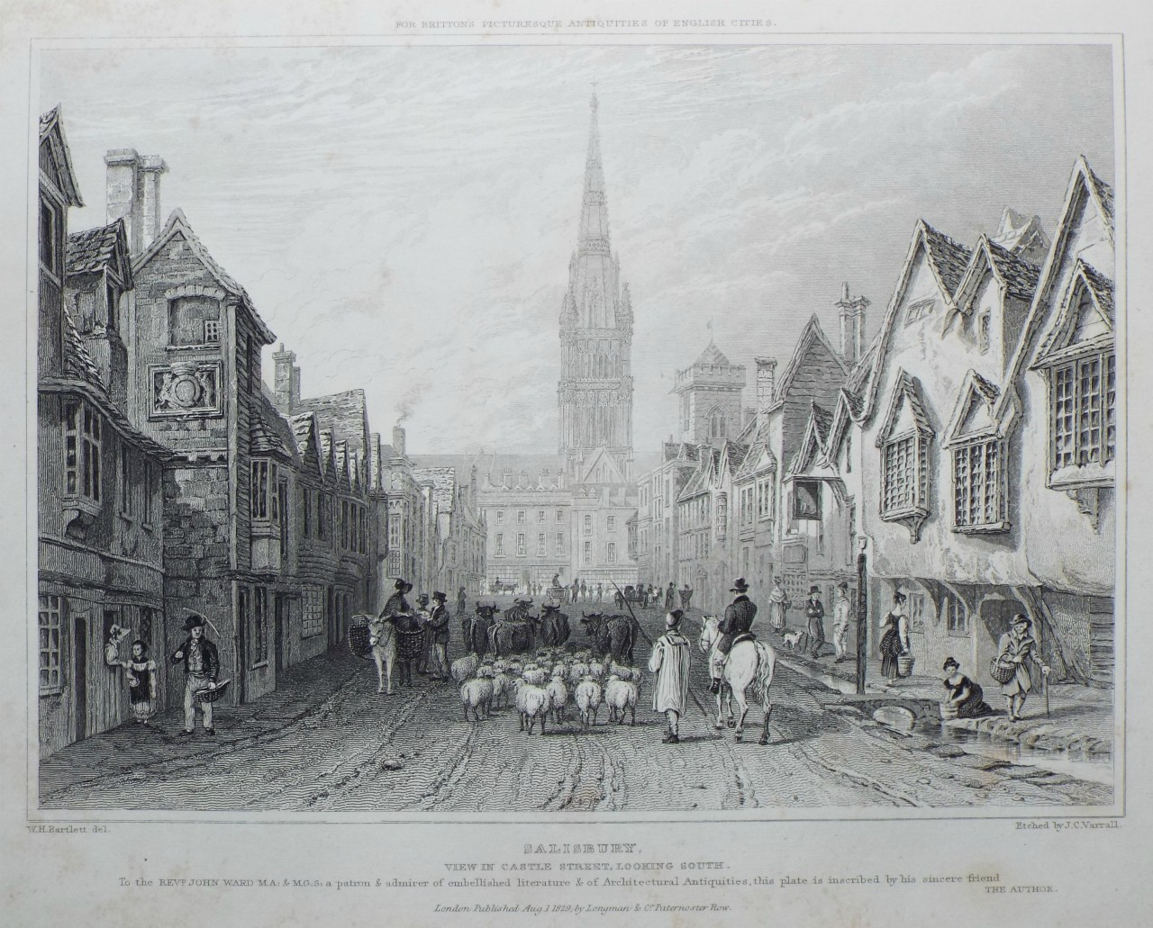 Print - Salisbury. View in Castle Street, looking South. - Varrall