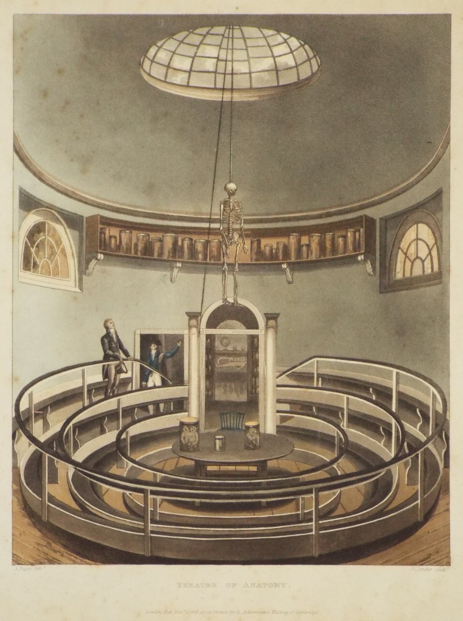 Aquatint - Theatre of Anatomy. - Stadler