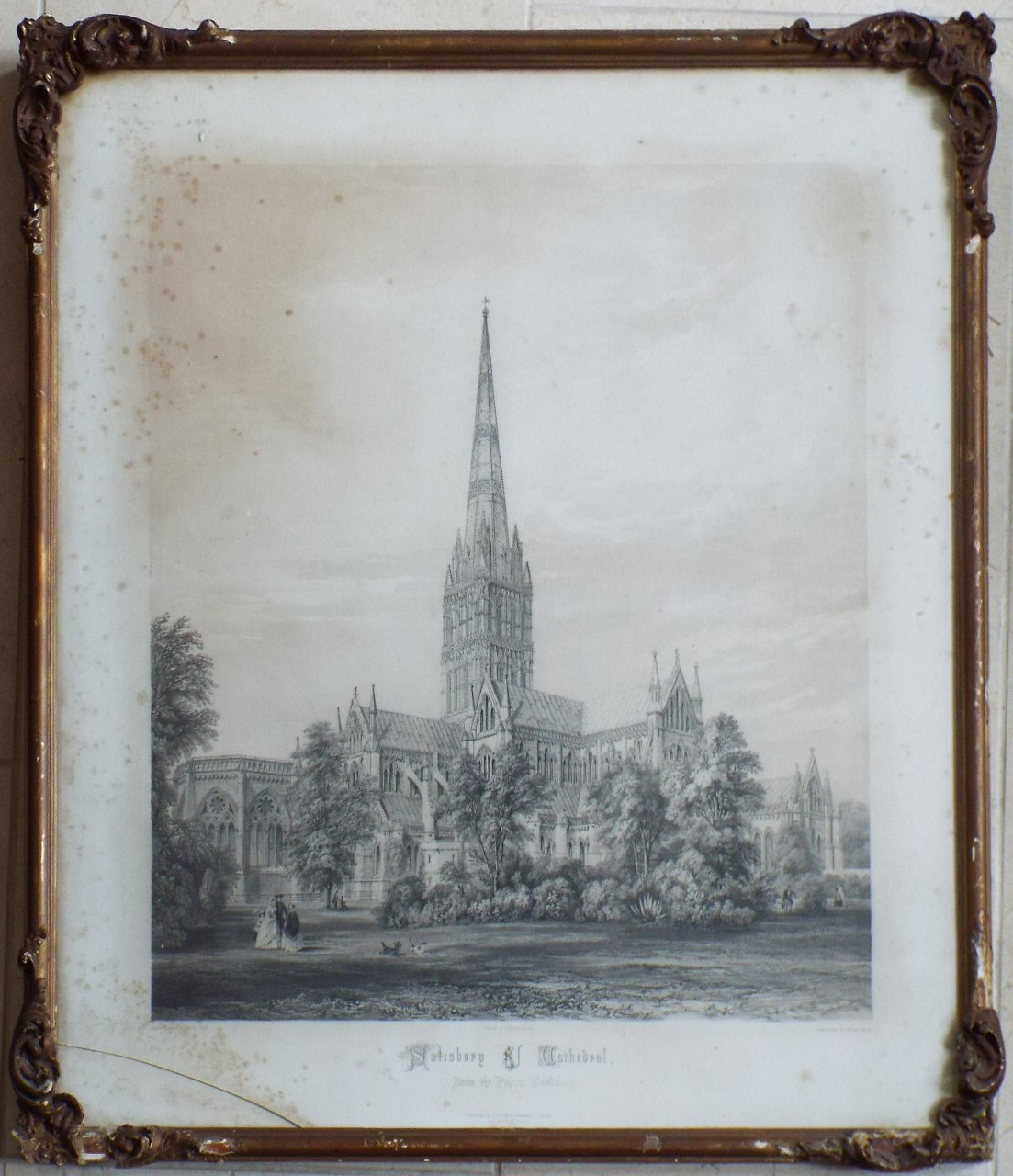 Print - Salisbury Cathedral from the Palace Garden. - Vincent