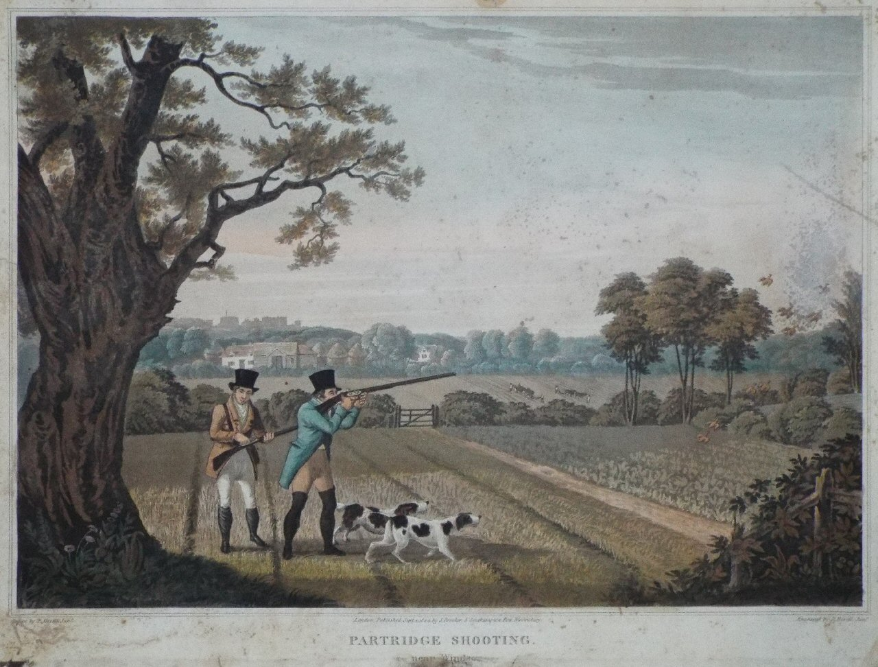 Aquatint - Partridge Shooting. near Windsor - Havell