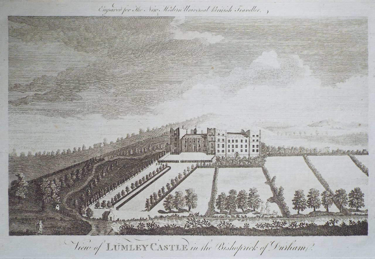 Print - View of Lumley Castle, in the Bishoprick of Durham.