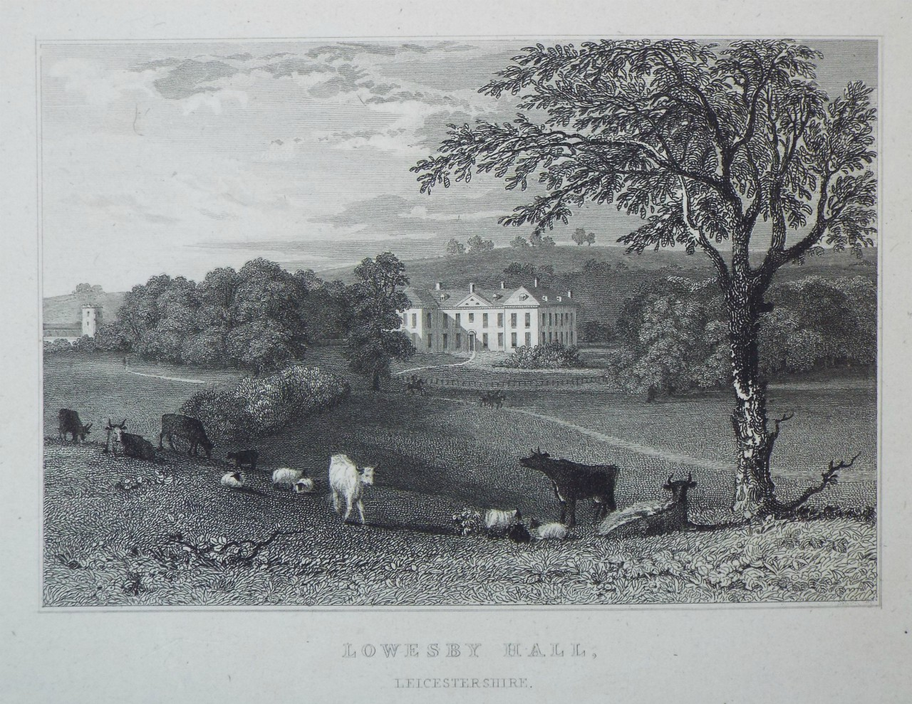 Print - Lowesby Hall, Leicestershire. - Capon