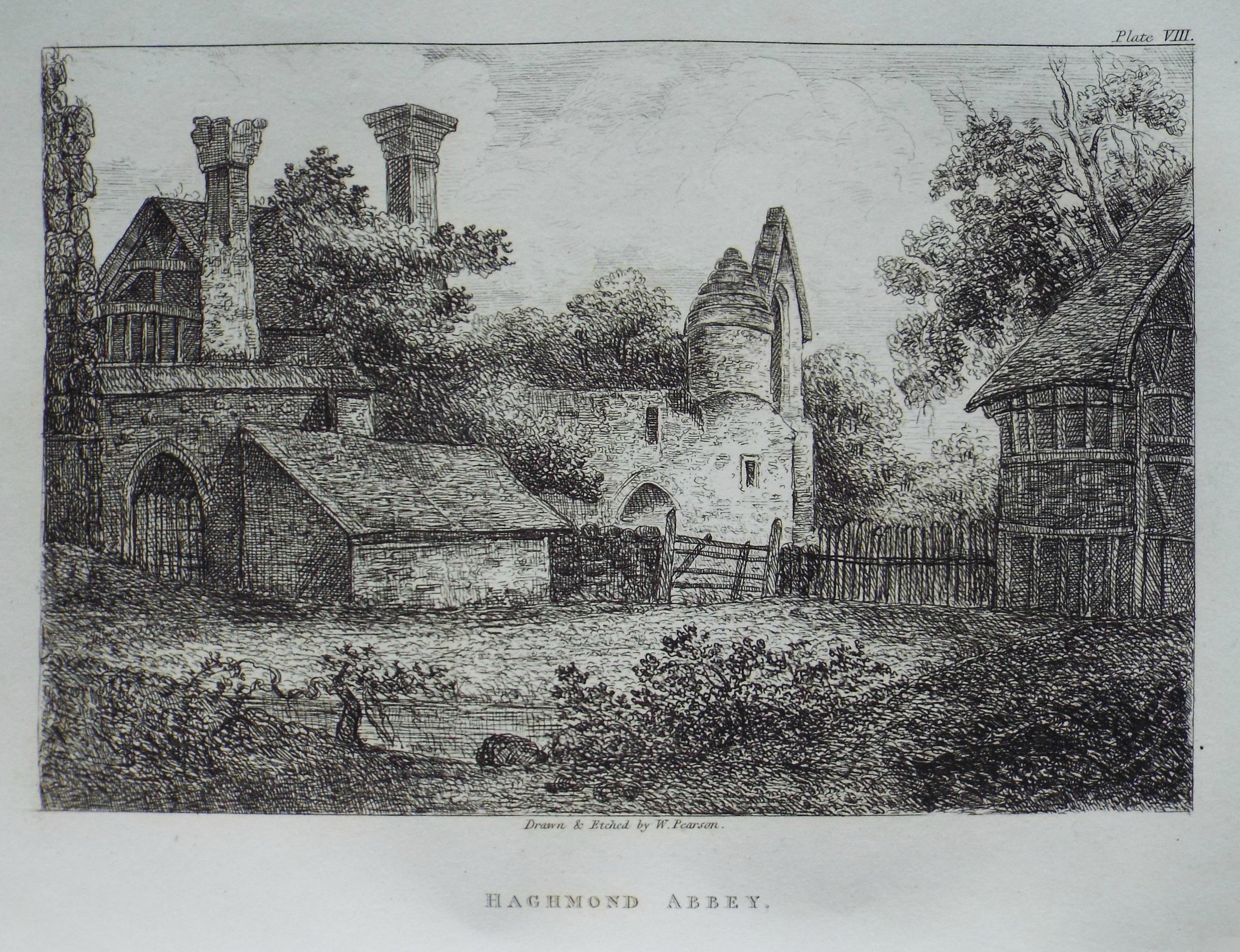 Etching - Haghmond Abbey - Pearson