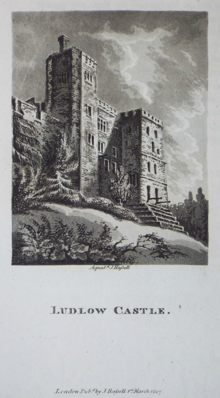 Aquatint - Ludlow Castle. - Hassell