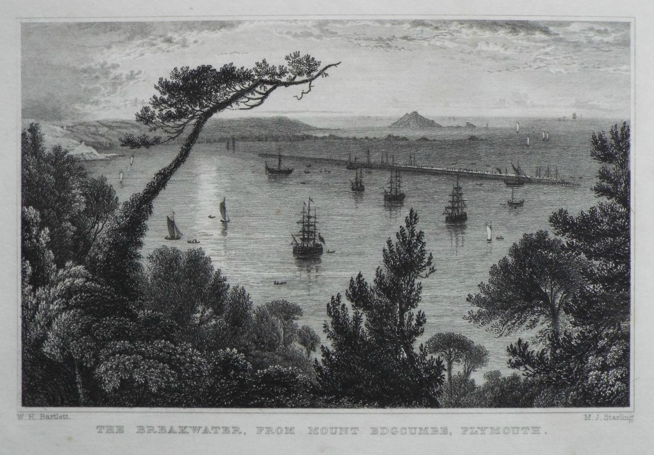 Print - The Breakwater, from Mount Edgcumbe, Plymouth. - Starling