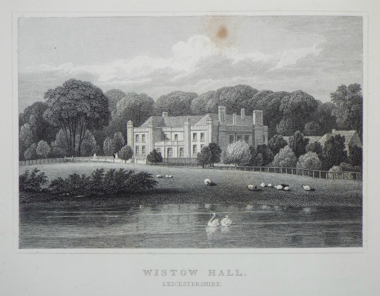 Print - Wistow Hall, Leicestershire. - Radclyffe