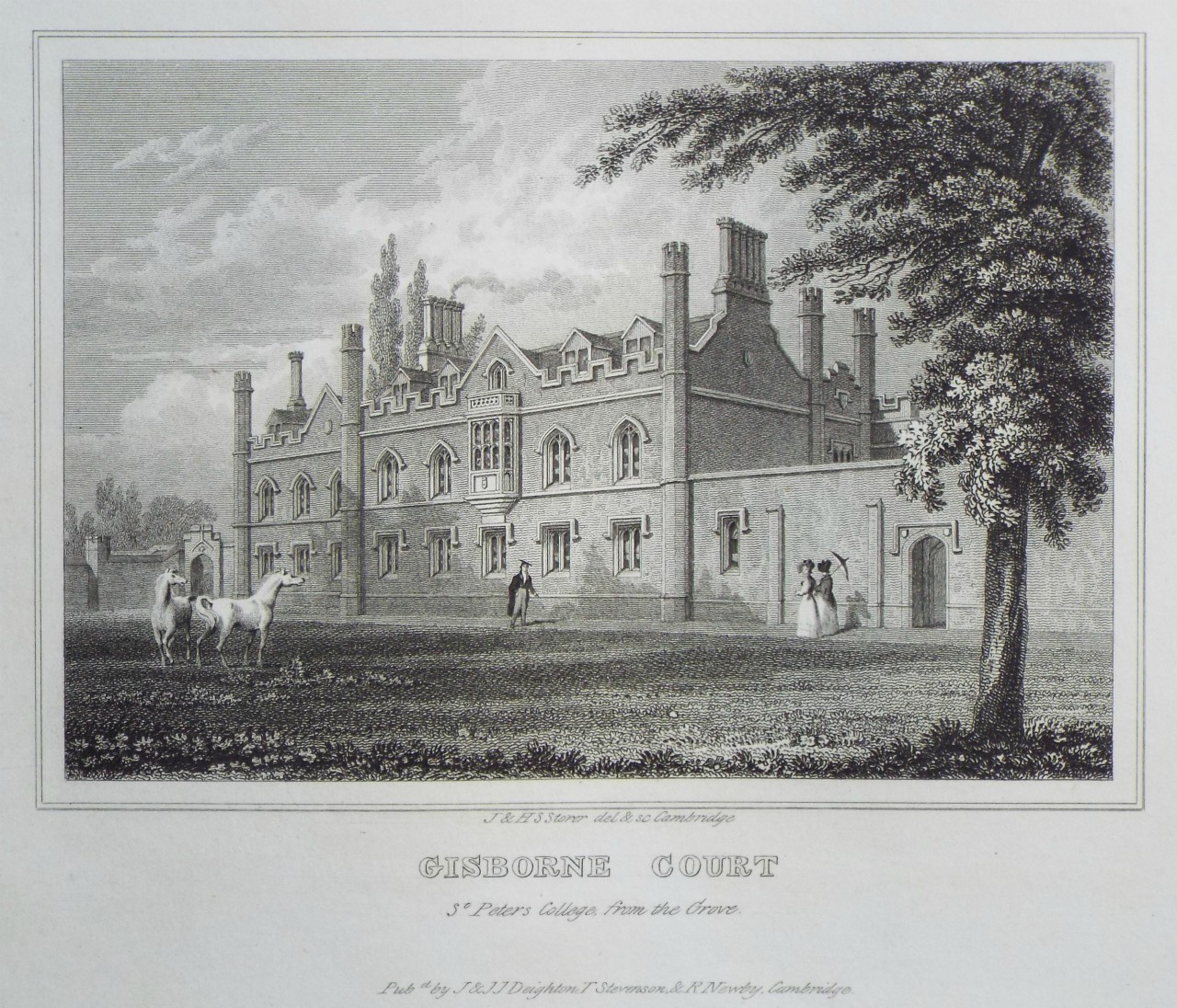 Print - Gisborne Court St. Peter's College from the Grpve. - Storer