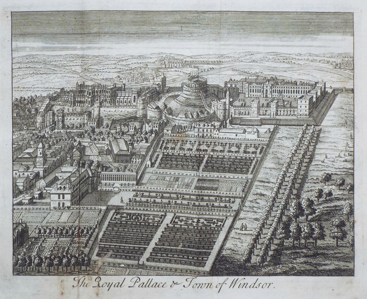 Print - The Royal Pallace & Town of Windsor.