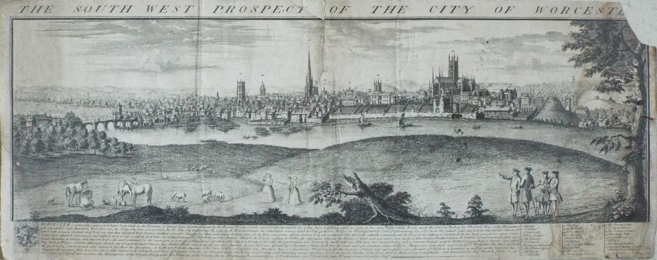 Print - The South West Prospect of the City of Worcester. - Buck
