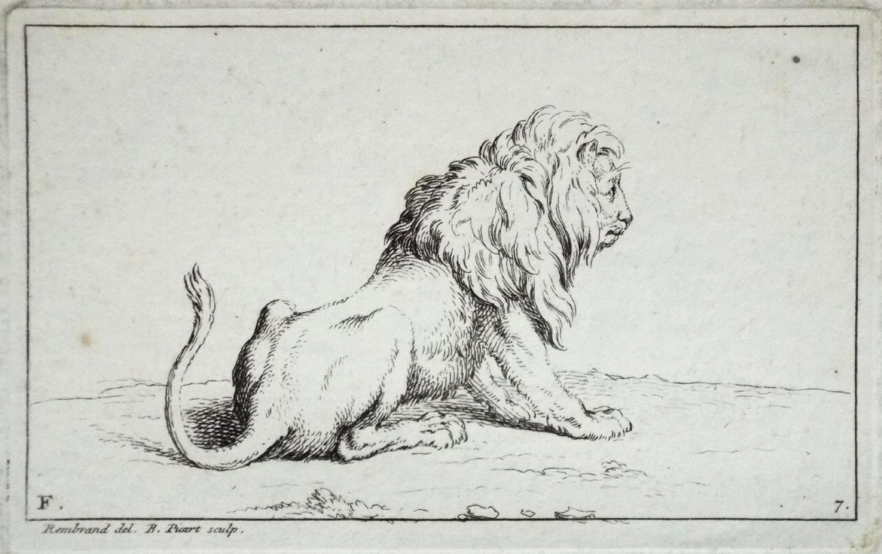 Etching - F. 7. Lion - Picart